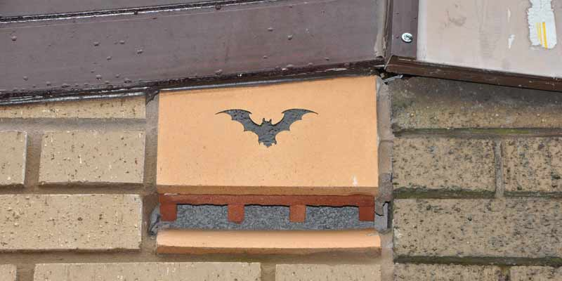How to choose and use bat boxes
